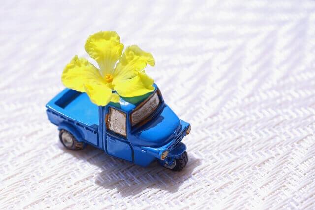 花弁を載せたミニカー