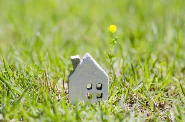 芝の中の家