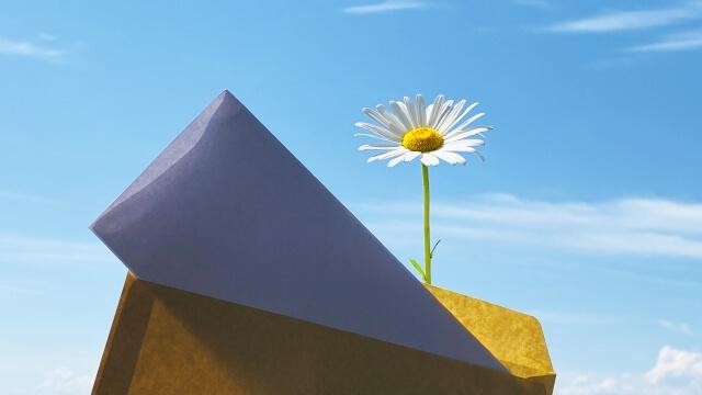 青空のもと、封を解かれた手紙と傍らに咲くガーベラ